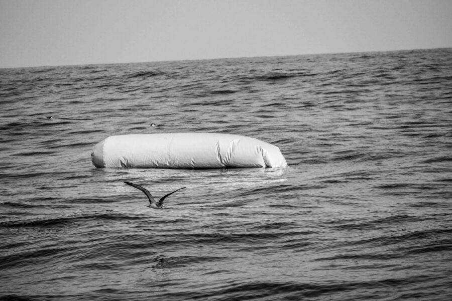 27 Iuventa Rescue Mediterranean Migration Selenemagnolia