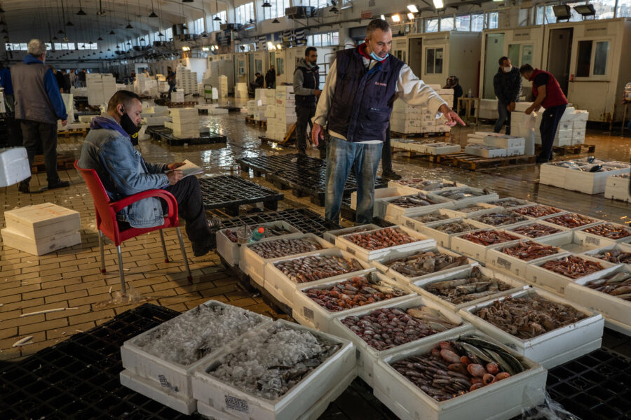 Keratsini, Greece, October 2020. A Merchant Is Selling Fish At The Biggest Fish Auction Taking Place Daily In All Greece In Pireus, The Port Of Athens. Here, Merchants Receive Fish From Fishermen And Sell It To Further Buyers.